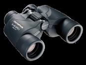 Olympus 8 x 40 DPS Binocular