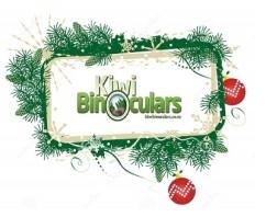 Christmas Season At Kiwi Binoculars
